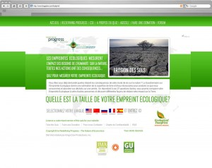 Chinese Russian French and Spanish website translation