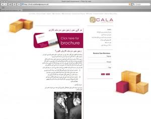 Urdu Hindi Bengali Punjabi website translation